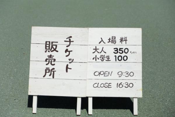 ガレージセールの入場料は、大人350円・小学生100円。高い!