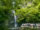 箕面の滝 2016ゴールデンウィーク。関西の新緑鑑賞スポットとして高得点!