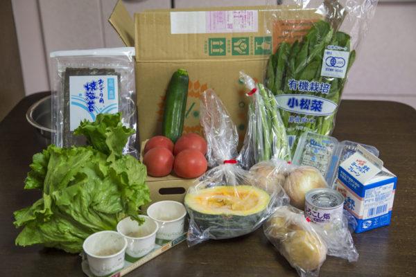 大地宅配のお試しセット。とくにレタスといんげん豆が最高だった。納豆・ゆう製品なども揃うので、普通のスーパーの代替として利用できる。