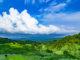美しき棚田のまち新潟「法末」で、絶景・星空・生き物に触れる合宿旅行を体験